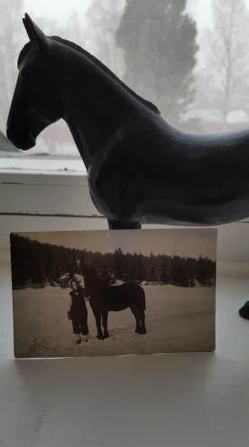 Hästen Svarten avbildades av Evas mors morbror Lars Jonsson From. Foto i privat ägo.