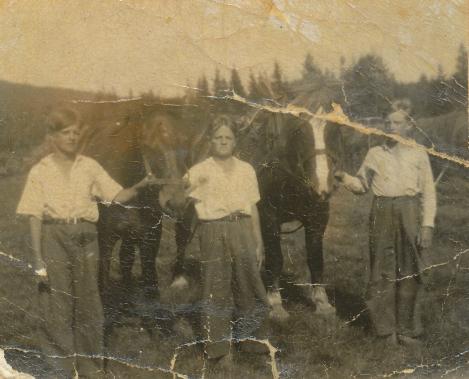 Bröderna Erling och Eskil tillsammans med kusinen Torsten och hästarna. I bakgrunden skymtar höhässjor. Foto i privat ägo.