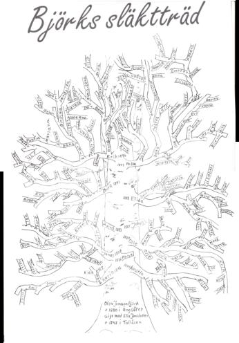släktträff-2001-björks-släktträd